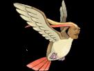 Sticker risitas pokemon roucarnage 018