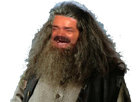 Sticker harry potter hagrid risitas cheveux barbe