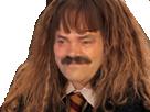Sticker harry potter hermione granger emma watson