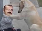 Sticker risitas celestin triste suicide chien rassure animal consoler console