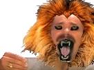 Sticker risitas felindra tete de tigre