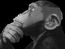 Sticker singe undercut penser