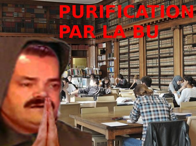 Sticker risitas purification bibliotheque universite bu moine