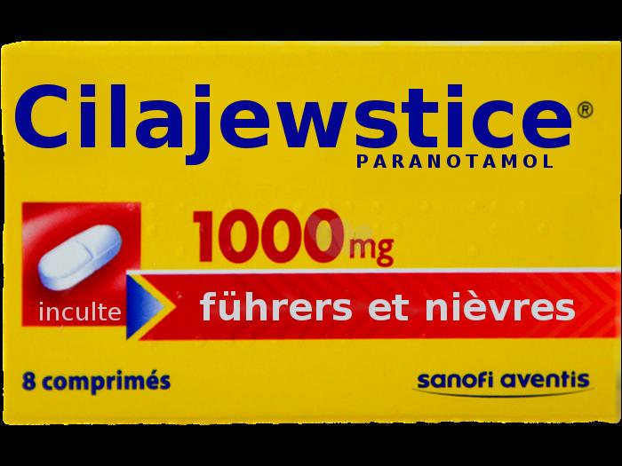 Sticker politic cilajewstice justice chofa facho sfu avn jvc