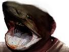 Sticker risitas jesus requin face deforme mutation phishing