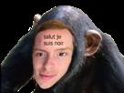 Sticker other roux petit bras singe facho fniste