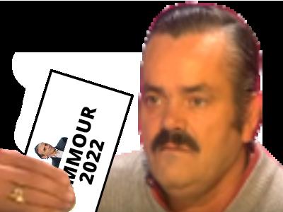 Sticker politic bulletin vote zemmour 2022 president