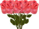 Sticker other rose anale fleur anus bud bouquet sfu