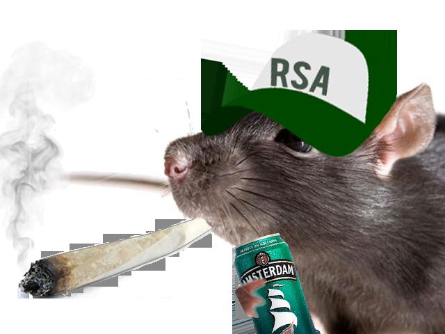Sticker other rat spliff bedo drogue lsd oinj beuh weed shit pilon defonce rsa casquette cannette biere