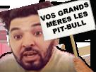 Sticker other mohamed henni vos grands meres les pit bull pit bulls pit bull