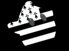 Sticker other luma etoile cfw bleu bretagne breton drapeau