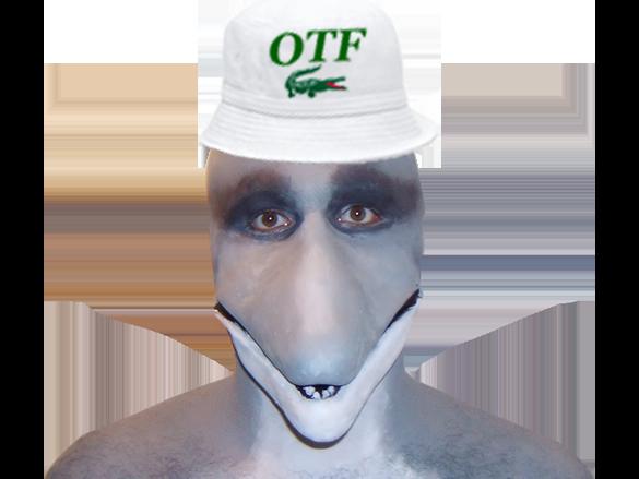Sticker risitas animal masque dauphin otf