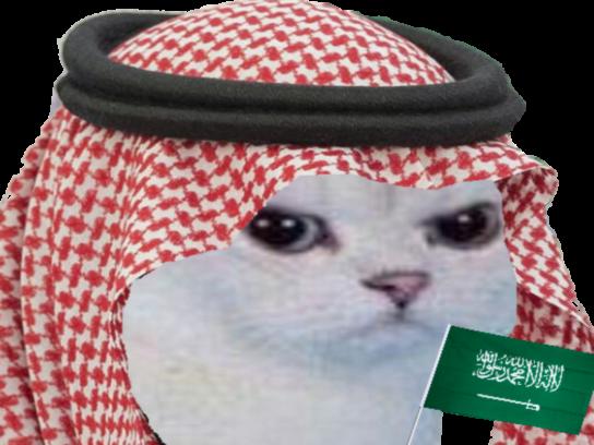 Sticker other chat blanc colere rage enerve foot football arabie saoudite arabe cdm coupe du monde drapeau turban